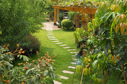 Prestations de services jardinage bricolage for Entretien jardin hyeres